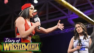 Nikki & John vs. Brie & Daniel?!  Fans ask hard-hitting questions - Diary of WrestleMania