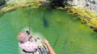Fishing CRYSTAL CLEAR water for POND MONSTERS!