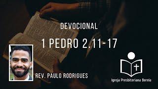 Devocional diário: 1 Pedro 2.11-17