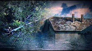 Fákat döntött ki, épületeteket rongált meg a viharos szél országszerte