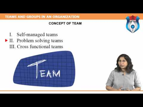 TEAMS AND GROUPS IN AN ORGANIZATION