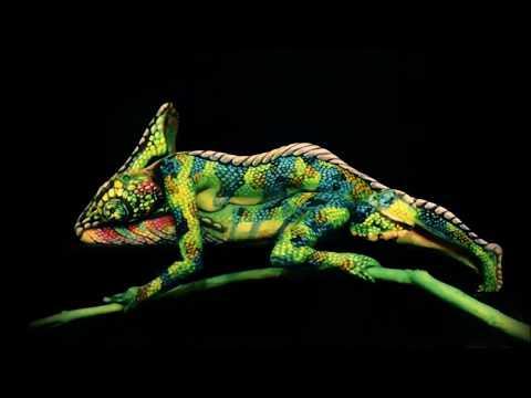 Personas camufladas en body painting
