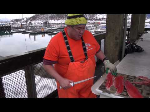 Pat Olson Professional Fish Filleter