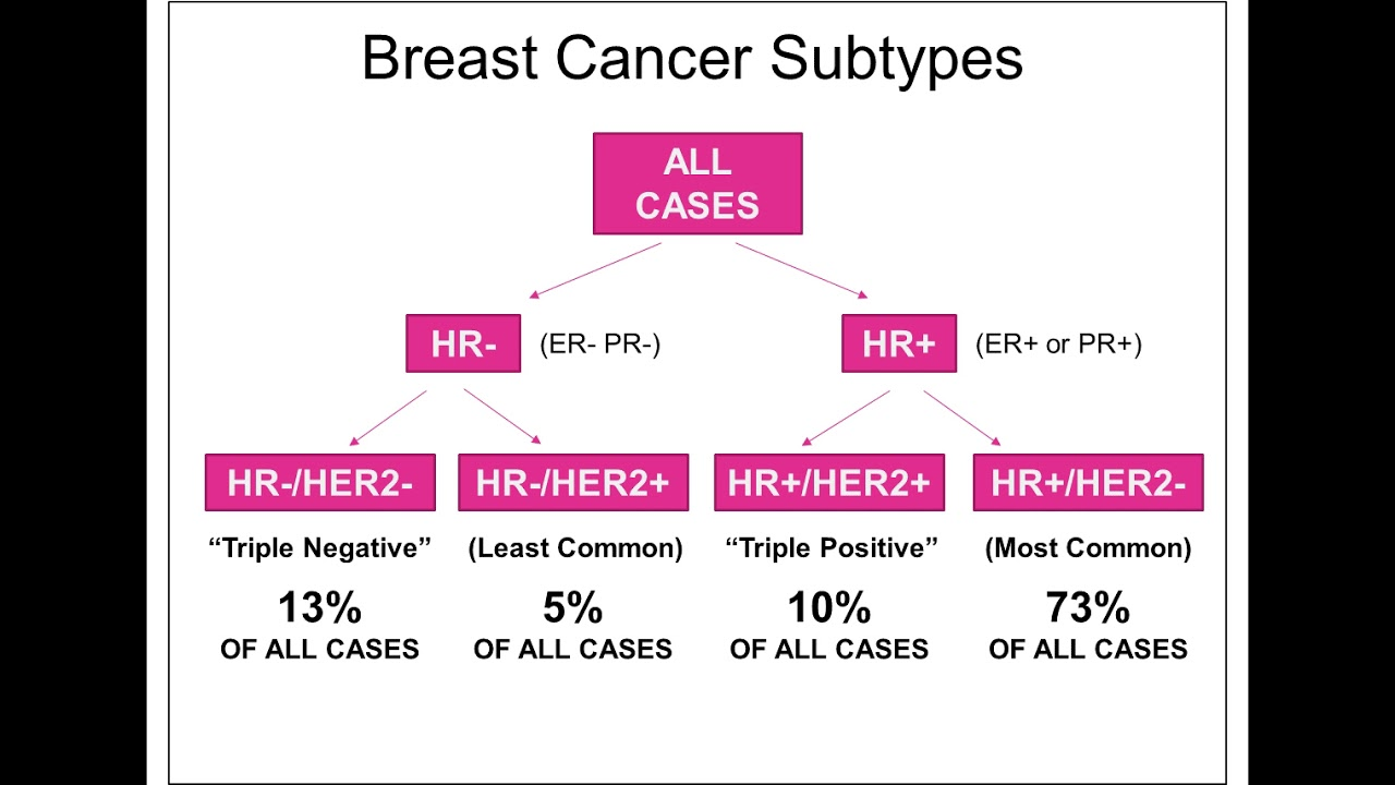 Optimizing Treatment Options for HER2+/ ER+ Breast Cancer using Models of  Endocrine Resistance