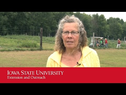 Iowa Women in Agriculture: Susan's Story
