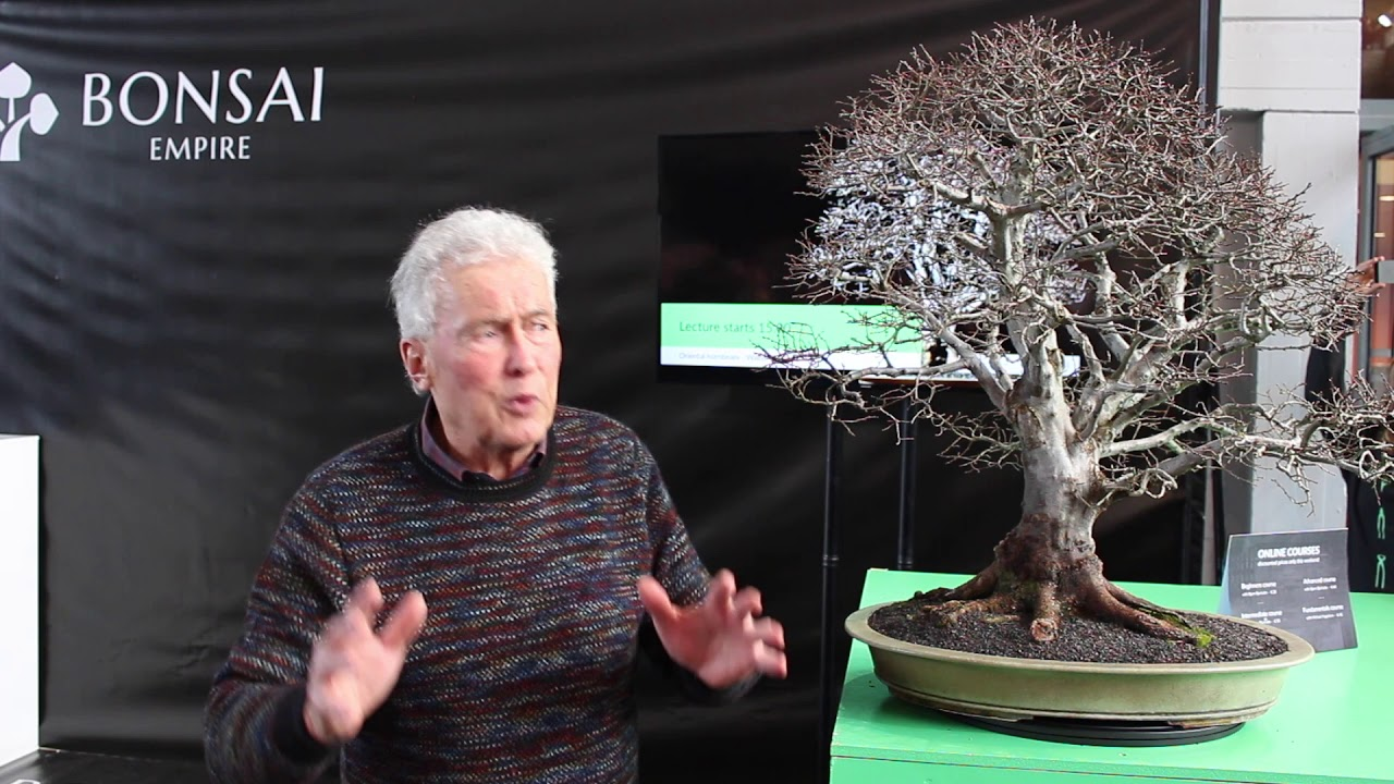The Naturalistic Bonsai Style By Walter Pall Youtube
