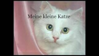 Meine Kleine Katze - Deutsches Katzen Kinderlied - German Cat Children Song