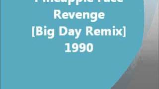 Indie - Revenge [Big Day Remix] - Pineapple Face (1990)