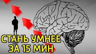 как заставить работать мозги