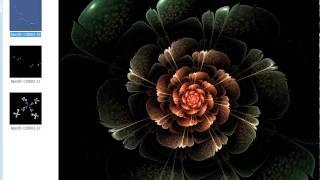 Flower fractal flame