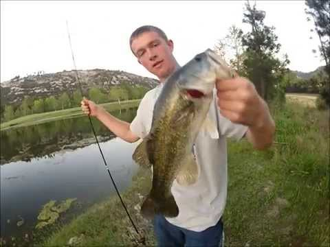 Bass fishing top water poppers youtube for Fishing poppers for bass