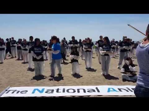 National Animal Rights Day: Toronto 2016