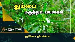 நுரையீரல் நோயை குணப்படுத்தும் தும்பை இலை | அறிவோம் அரோக்கியம் | Puthuyugam TV