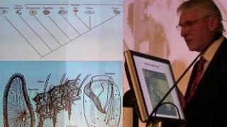 Wie einzigartig ist der Mensch? Die Evolution des Geistes, der Intelligenz und des Bewusstseins (1)