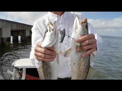 Trolling For Trout In Lake Pontchartrain