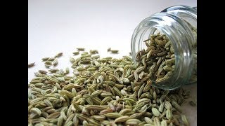 Episode 181 - 7 Reasons to Chew Fennel Seeds Post Meal