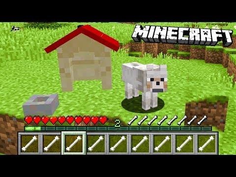 Minecraft: ZMIENIŁEM SIĘ W PIESKA! | Jak Grać Jako PIES