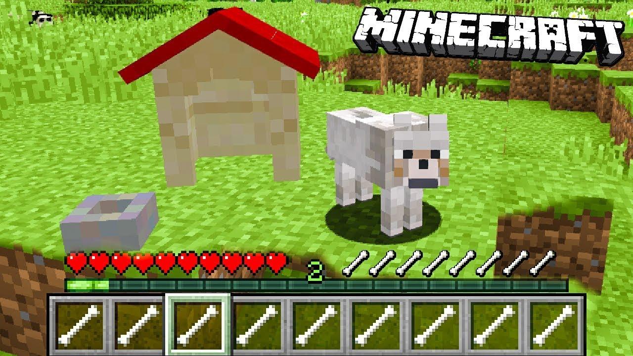 Minecraft Ale Gram Jako Pies Youtube