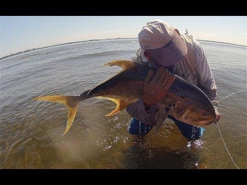 Kayak Fishing, Stuart, FL - Personal Best Jack Crevalle
