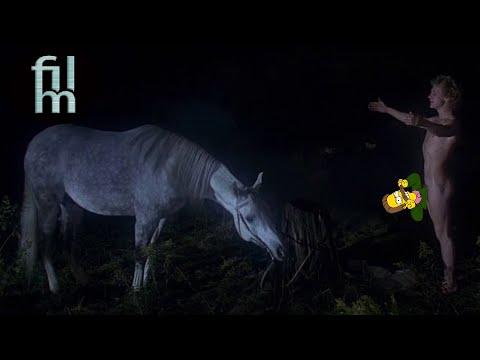Cine y Zoofilia - 6 animales que tienen sexo con personas en peliculas thumbnail