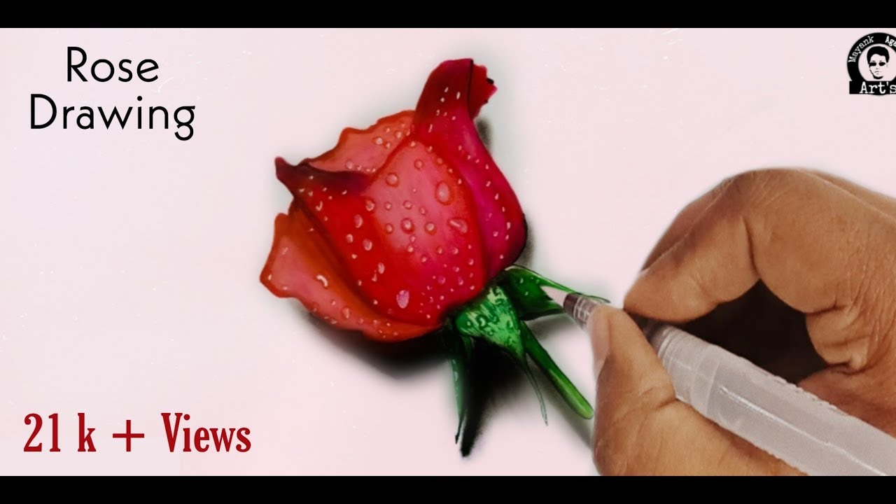 How To Draw A 3D Rose For Beginners