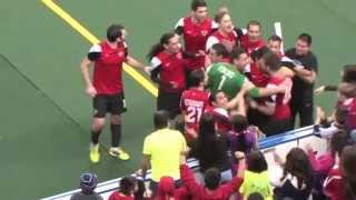 Chicago Mustangs vs. Milwaukee Wave Highlights 2/26/15