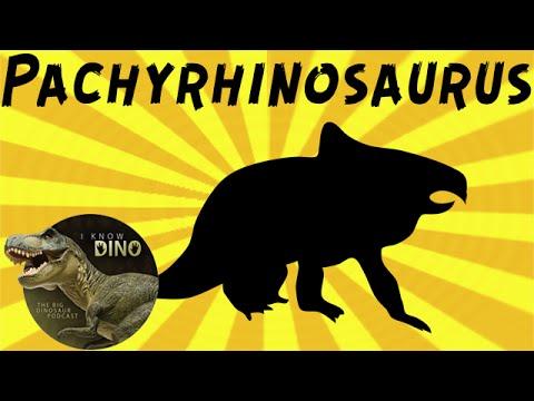 Pachyrhinosaurus: Dinosaur of the Day
