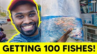 Getting 100 fishes...Gone wrong..! | Vijay viruz
