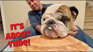 Reuben the Bulldog: Taste Test