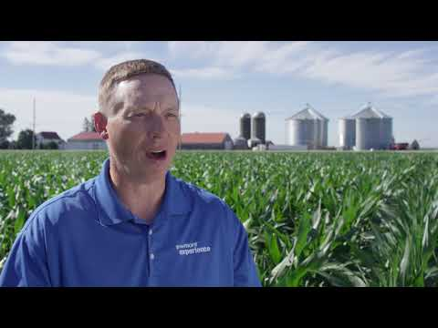 Traer, IA corn herbicide trial highlights Acuron