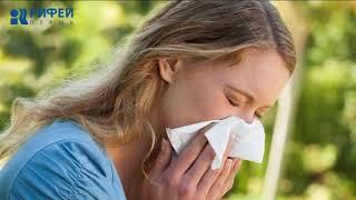 Ваше здоровье. Аллергия и бронхит