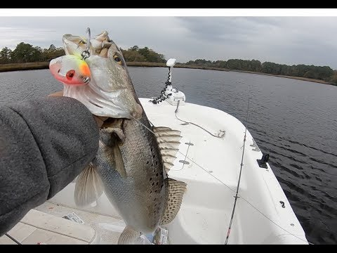 GIANT SPECKLED TROUT And MORE GIANT SPECKLED TROUT - Mirrolure TIPS And HOW TO