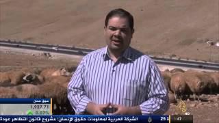 انخفاض في أسعار الأضاحي بالأردن