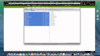 How To Setup A Domain and Install Wordpress On A Linux Server by Vincent Polisi