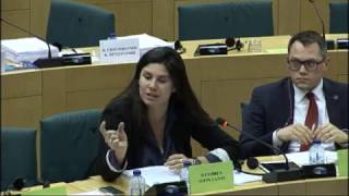 Intervention à la commission sur les règles du droit d'auteur et des droits voisins