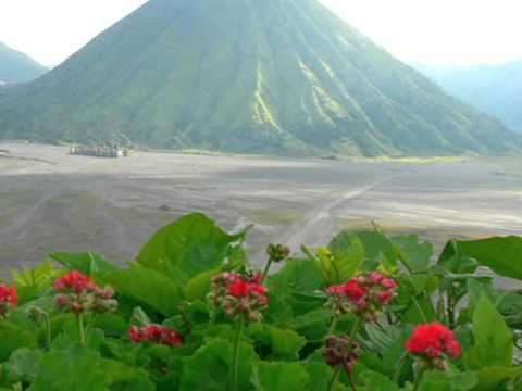 Visit Mount  Bromo  - Wisata Bromo - East Java - Indonesia Travel Guide (Tourism)