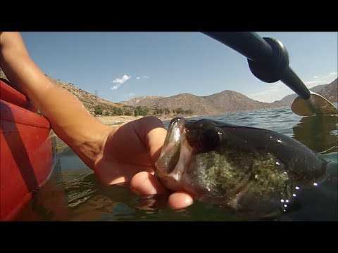 Bass fishing at el capitan reservoir san diego youtube for Bass fishing san diego