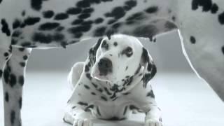 La Roche-Posay SkinChecker video Thumbnail