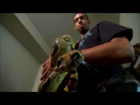 Two Cold Blooded Performers: Danny Green and His Pet Snake