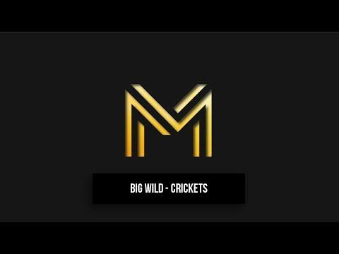 Big Wild - Crickets