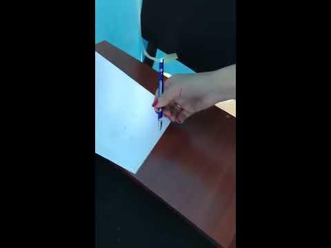 Fake pens during elections in Kazakhstan