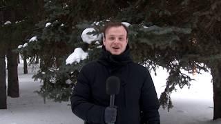 Альметьевск спортивный (29.01.2019)