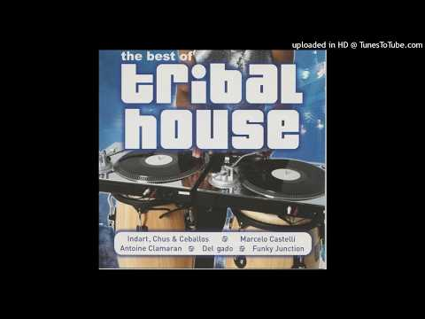 The Best Of Tribal House CD1