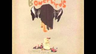 Watch Bowerbirds Silver Clouds video