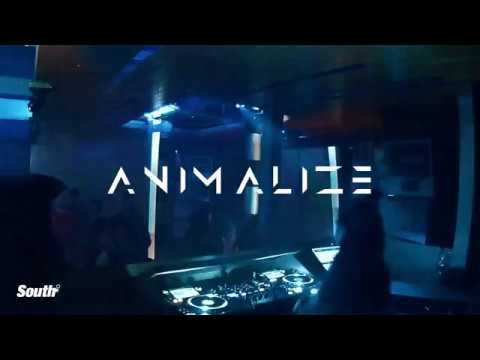 A N I M A L I Z E @ South Nightclub Manchester 03.08.18