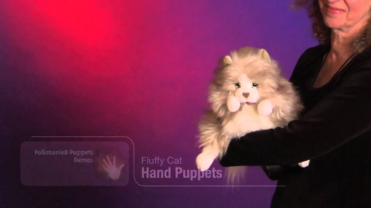 How To Make A Realistic Cat Puppet