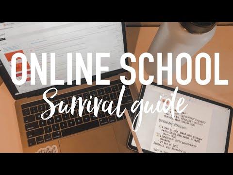 how-to-survive-online-school-/-college-/-classes