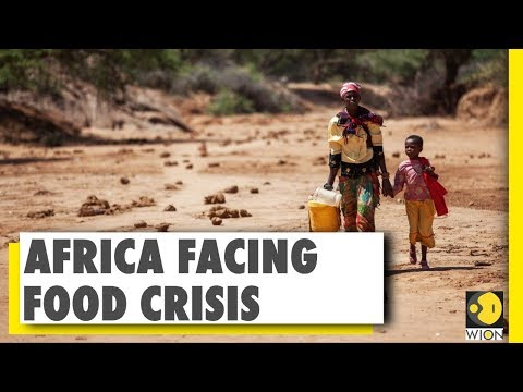Africa unable to cope with food crisis | Africa Locust attack | World News