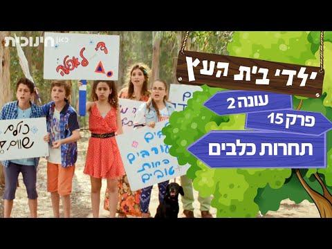 ילדי בית העץ עונה 2: תחרות כלבים