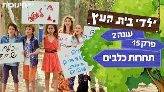 ילדי בית העץ עונה 2 | פרק 15 - תחרות כלבים thumbnail